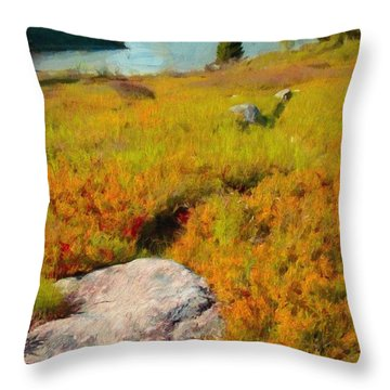 Acadia Spring Throw Pillow by Jeff Kolker