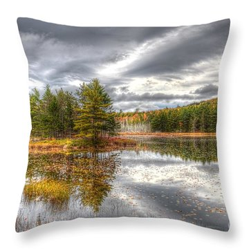 Acadia With Autumn Colors Throw Pillow