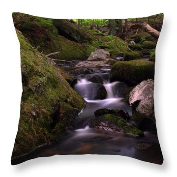 Accidental Discovery Throw Pillow by Greg DeBeck