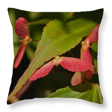 Acer Wings Throw Pillow