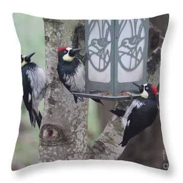 Acorn Woodpeckers Throw Pillow by Erica Hanel