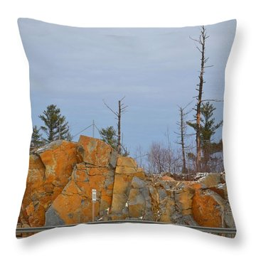 Throw Pillow featuring the photograph Across The Highway  by Lyle Crump