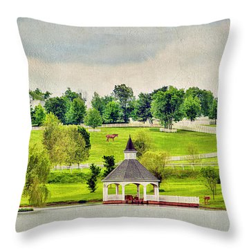 Across The Pond Throw Pillow by Darren Fisher