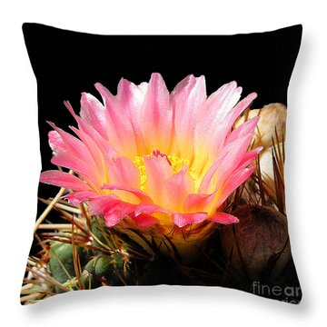 Throw Pillow featuring the photograph Cactus Flowser No. 7 by Merton Allen