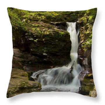 Adams Falls 0348 Throw Pillow by Tom Kelly