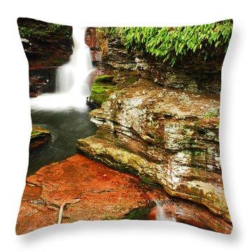 Adams Falls Throw Pillow by James Kirkikis
