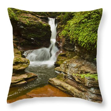 Adams Falls Throw Pillow by Tom Kelly