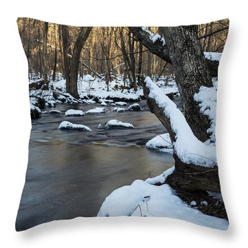 Adamsville Brook Throw Pillow by Andrew Pacheco