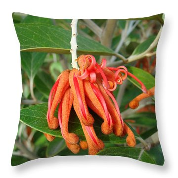 Adaptable Exotic Throw Pillow by Cheryl Hoyle