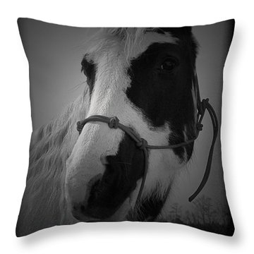Addie Mason 2 Throw Pillow