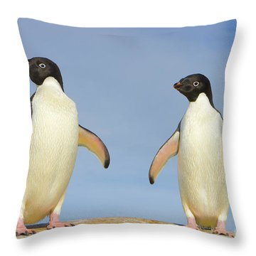 Adelie Penguin Duo Throw Pillow