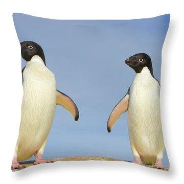 Adelie Penguin Duo Throw Pillow by Yva Momatiuk John Eastcott