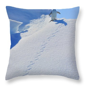 Adelie Penguin On Bergie Bit Throw Pillow by Tony Beck
