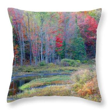 Adirondack Fall Throw Pillow by Mariarosa Rockefeller