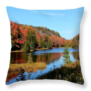 Adirondack Splendor Throw Pillow