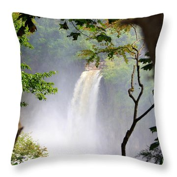 Adirondacks Waterfall Throw Pillow by Patti Whitten