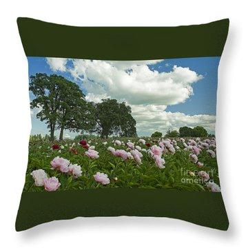 Adleman's Peony Fields Throw Pillow