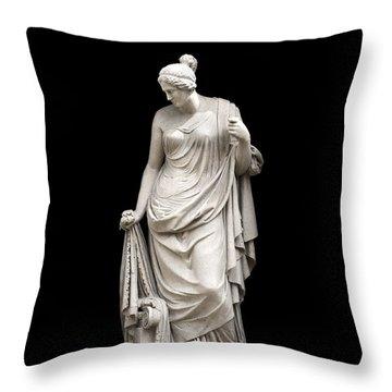 Admiration Throw Pillow by Fabrizio Troiani