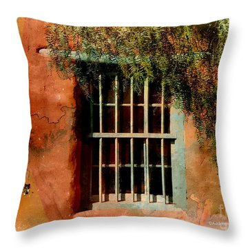 Adobe Window Throw Pillow