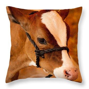 Adorable Calf Throw Pillow