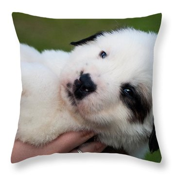 Adorable Hand Full Throw Pillow by Mechala  Matthews