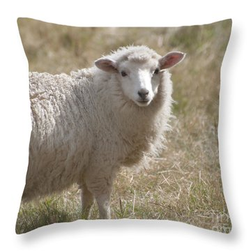 Adorable Sheep Throw Pillow by Loriannah Hespe