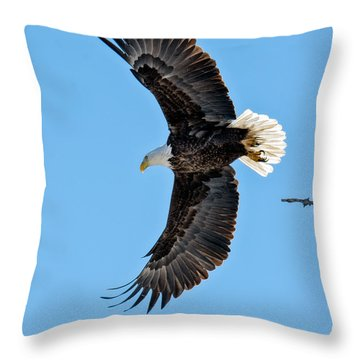 Adult American Bald Eagle Leaving A Branch Throw Pillow