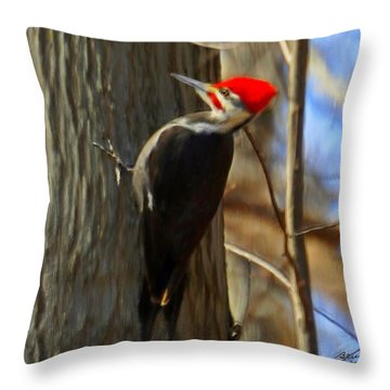 Adult Male Pileated Woodpecker Throw Pillow by Bruce Nutting