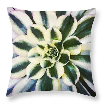 Throw Pillow featuring the digital art Aeonium Symmetry by Photographic Art by Russel Ray Photos