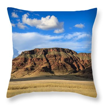 Aferican Grass And Mountain In Sossusvlei Throw Pillow