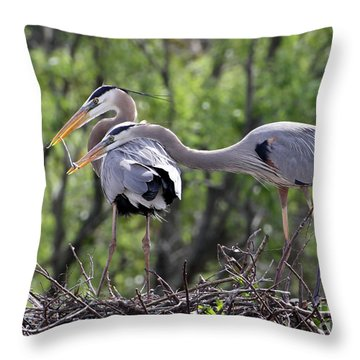 Affectionate Great Blue Heron Mates Throw Pillow