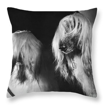 Afghan Hound Throw Pillow by ME Browning