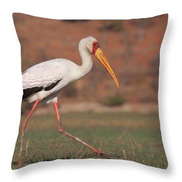 Chobe National Park Throw Pillows