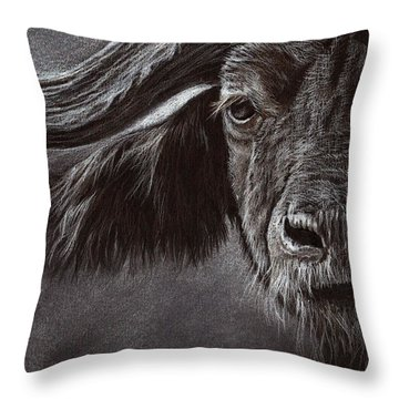 African Buffalo Throw Pillow by Heidi Kriel