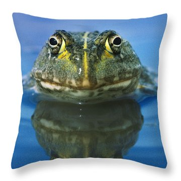 African Bullfrog Throw Pillow by Frans Lanting MINT Images