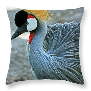 African Crane Throw Pillow by Larry Nieland