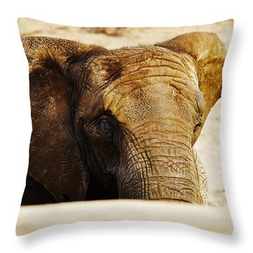 African Elephant Behind A Hill Throw Pillow