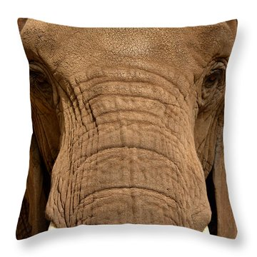 Throw Pillow featuring the photograph African Elephant by Nadalyn Larsen