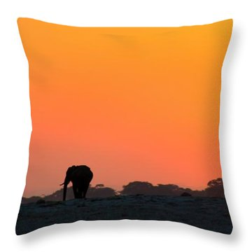 Throw Pillow featuring the photograph African Elephant Sunset by Amanda Stadther