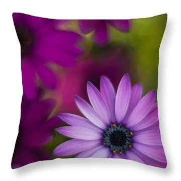 African Gerbera Standout Throw Pillow