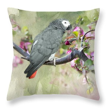 African Gray Among The Blossoms Throw Pillow