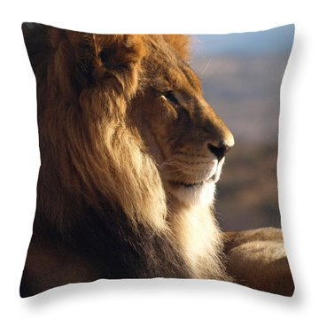 African Lion Throw Pillow by James Peterson