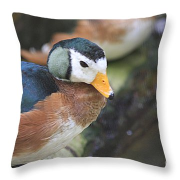 African Pygmy Goose Throw Pillow