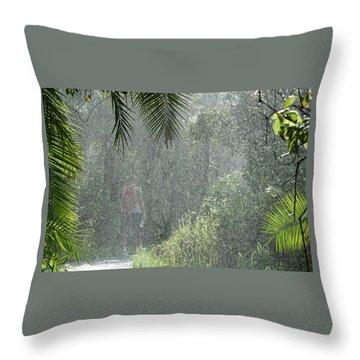 African Rain Throw Pillow