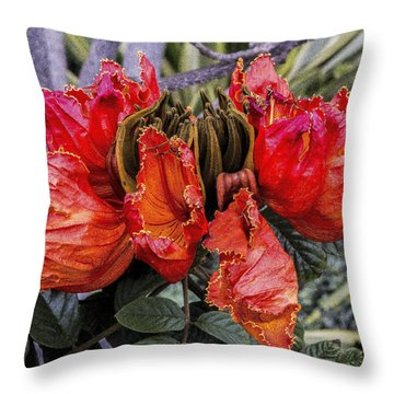 Throw Pillow featuring the digital art African Tulip Tree by Photographic Art by Russel Ray Photos