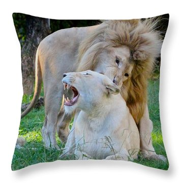 African White Lions Throw Pillow