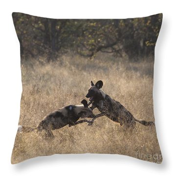 Throw Pillow featuring the photograph African Wild Dogs Play-fighting by Liz Leyden