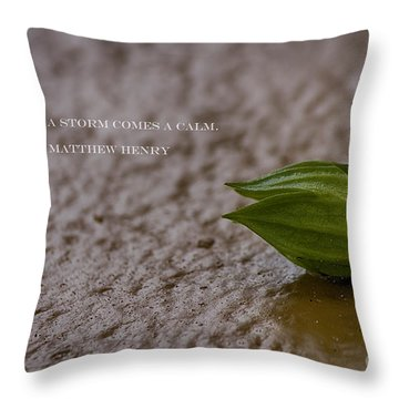 After A Storm Throw Pillow by Anne Rodkin