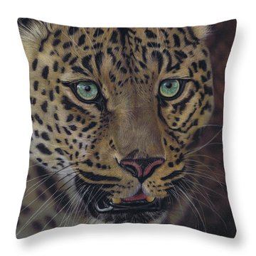 After Dark All Cats Are Leopards Throw Pillow