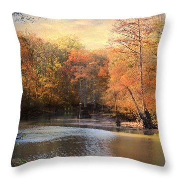 After Daybreak Throw Pillow by Jai Johnson